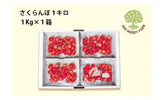 0062-101 さくらんぼ(佐藤錦か紅秀峰)1kg ご家庭用