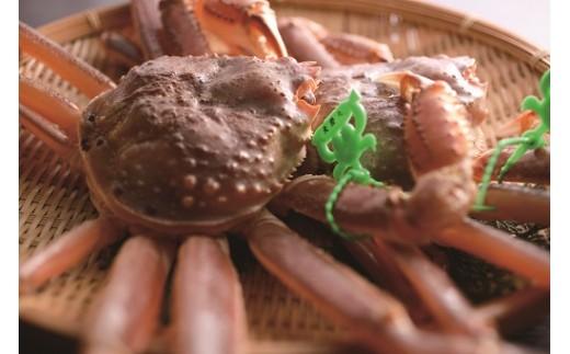 07-06  兵庫県産 タグ付き活松葉がに 約1.1kg