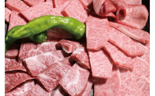 DD-37 和牛日本一鹿児島特選焼肉用詰合せ