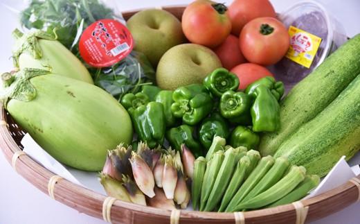 [№5636-0213]ひとよし球磨産 新鮮農作物詰合せ