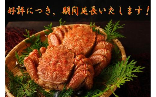 35-5 【期間・数量限定】旬の味覚!!紋別産浜ゆで毛がに(2尾)