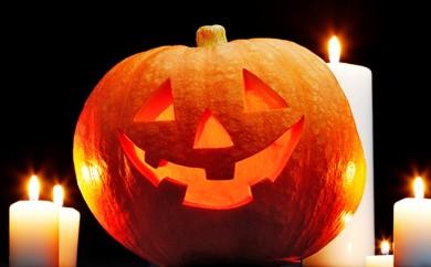 [№5724-0200]《数量限定》ハロウィンかぼちゃ L玉2個