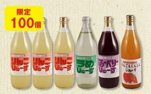 30-A54 手づくりふる里の味 果汁ジュース詰め合わせ