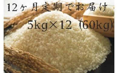 【頒布会】福岡県産ヒノヒカリ(2017年秋収穫のお米)5キロ×12回 定期コース(全12回のお届け)