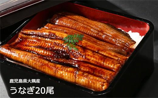 727 鹿児島県大隅産うなぎ蒲焼20尾