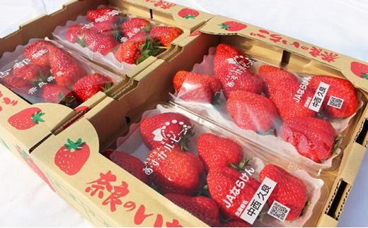 [№5545-0027]奈良県産いちご『古都華』『あすかルビー』2箱(各2パック)