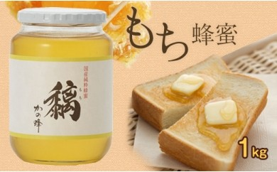 DJ30 国産もち蜂蜜【1kg】