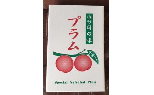 0033-105 プラム(貴陽)1.2kg