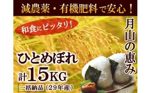 NB411 平成29年産 月山の恵み 庄内米 ひとめぼれ15kg