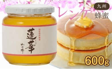 DJ24 <国産>九州レンゲ蜂蜜【600g】