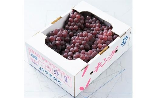 0060-102 ぶどう(キングデラ)2kg