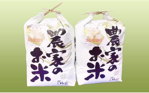 B-07 岡山県井原市芳井産コシヒカリ 10kg