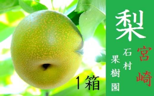 A-101 【全4品種】石村果樹園の梨 3kg以上【2,500pt】