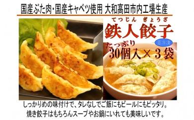 [№5544-0061]鉄人餃子(てつじんぎょうざ)3袋セット
