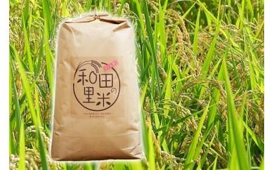[№5728-0156]和田の里米 10kg(玄米)