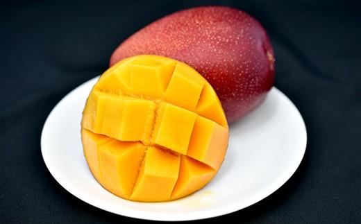 813 鹿児島県産完熟マンゴー秀品1kg