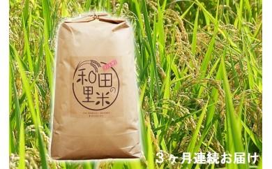 [№5728-0157]和田の里米10kg 3ヶ月連続