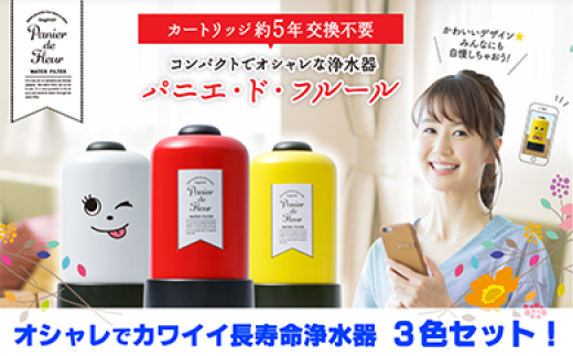 【150005】長寿命浄水器3台プレゼント贈答に新築祝・引越祝・出産祝