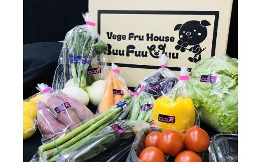D-049 農業姉妹がこだわって栽培!西洋野菜が入った旬の野菜詰め合わせ8種類
