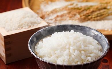 [№5659-0464]信州のお米(長野県ブランド米):風さやか:10kg
