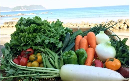 SGN13 阿波の国海陽町 旬のお野菜詰め合わせセット 寄附額5,000円