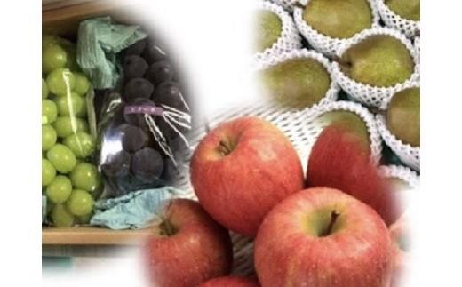 0065-101 フルーツセット(シャインマスカット入詰め合せぶどう・ラフランス・りんご)【頒布会】