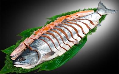 [№5779-0162]北海道産新巻鮭姿切身約2~2.5kg