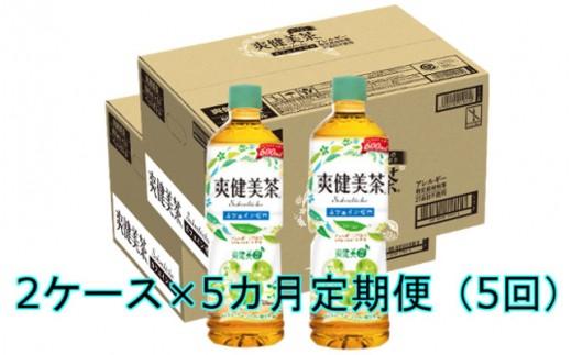E-031 【5カ月定期便】爽健美茶600mlPET(2ケース×5回)
