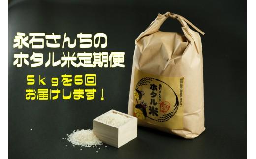 d-6 永石さんちのホタル米定期便(5kg×6回)