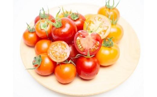 串間産【完熟フルーツトマト】A-35