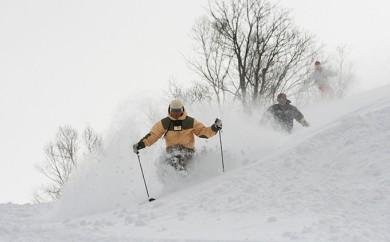 [№5779-0206]日高国際スキー場ナイター共通シーズン券(大人)