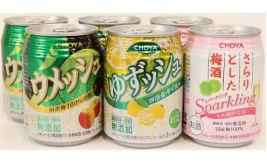 チョーヤ CHOYA250ml缶×6缶アソート×4セット×2ケース(48本)