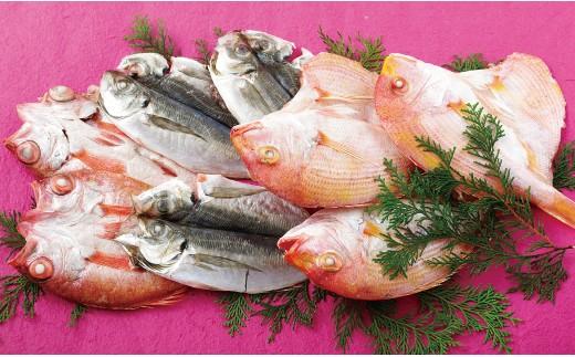 R201 柴﨑水産のどぐろ・れんこだい・旬の魚セット【500pt】
