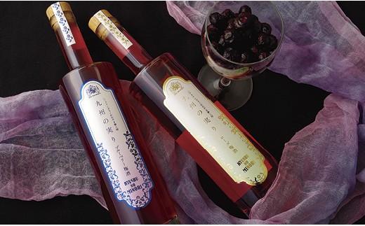 L526 九州の実りローズ梅酒・ブルーベリー梅酒【500pt】