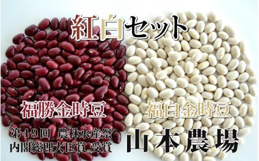 [№5891-0286]山本農場 十勝とよころの金時豆 紅白詰合せ 1.6kg×2種