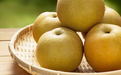 [№5800-0130]最高級 蔵王の梨(豊水)約5kg特秀・大玉※クレジットのみ