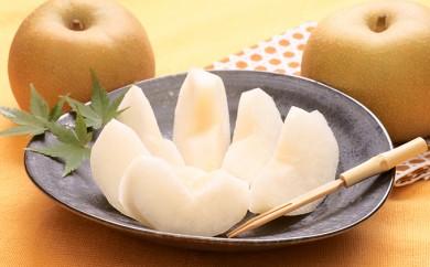 [№5800-0131]最高級 蔵王の梨(幸水)約5kg特秀・大玉