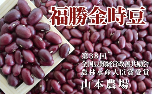 [№5891-0283]山本農場 十勝とよころの金時豆(福勝金時)1.6kg