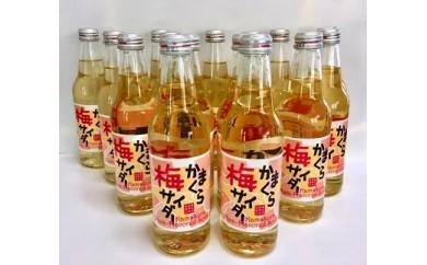 鎌倉酒販協同組合「かまくら梅サイダー15本セット」