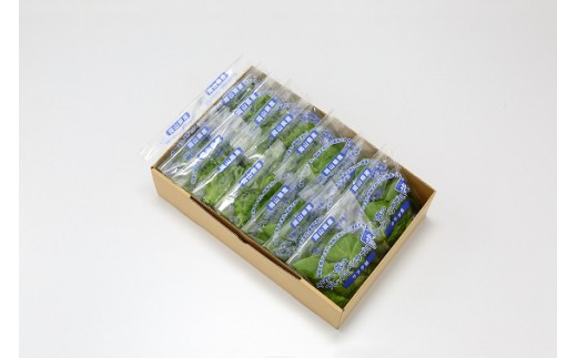 【5-03】 植物工場産野菜・御徳用B-6セット(6ヶ月契約)1セット×6回
