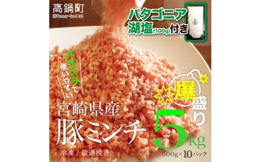 282_tf <宮崎産豚ミンチ5kg+塩>平成30年6月末迄に順次出荷
