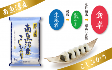 【JA魚沼みなみ定期便】南魚沼産こしひかり(25kg×全3回)