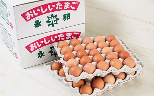 B)おいしいたまご永光卵 100個