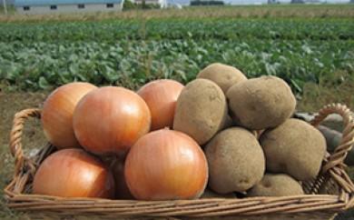 [№5749-0264]北海道ホープランド農場のじゃがたまセット(メークインと玉ねぎ)