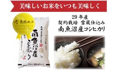 【頒布会】契約栽培 雪蔵貯蔵米 南魚沼産こしひかり(5kg×全3回)