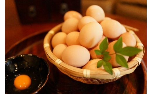 9-A.名古屋コーチン卵(30個入り)