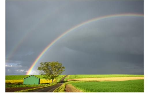 [100-32]写真家 阿部俊一 額付き写真「道の上に架かる虹」
