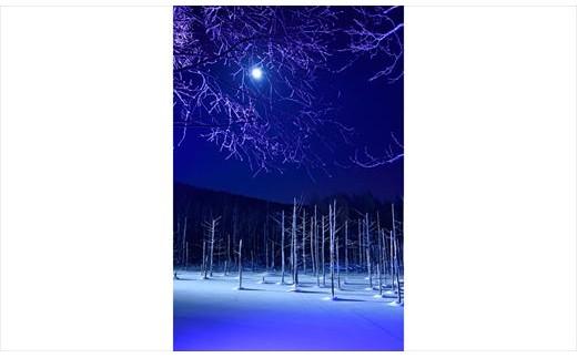 [100-36]写真家 阿部俊一 額付き写真「月光の輝き」