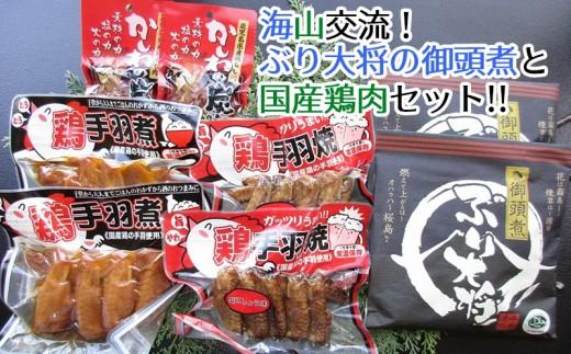 A1-0209/【海山交流】ぶり大将の御頭煮と国産鶏肉セット!!