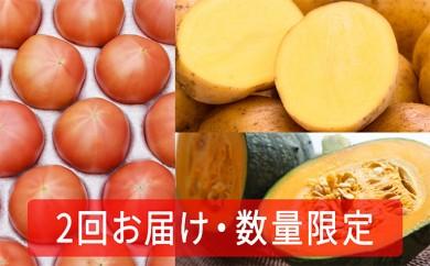 [№5724-0203]≪お得!2回お届け≫こだわりフルーツトマト(20玉以上)と幻のじゃがいもインカのめざめ約5kgとかぼちゃ2玉